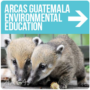 ARCAS Guatemala City Environmental Education