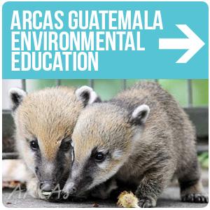 ARCAS Guatemala Educación Ambiental
