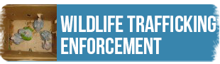 ARCAS Wildlife Trafficking Enforcement