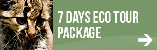 7 Day ARCAS EcoTour Package