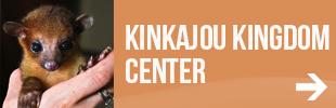 Eco-Tourism: Kinkajou Kingdom Environmental Education Center