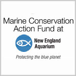 Marine Conservation Action Fund