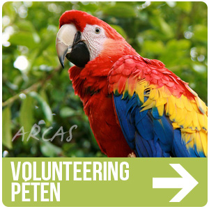 ARCAS Volunteering In Peten