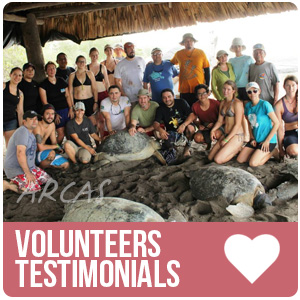Volunteers Testimonials